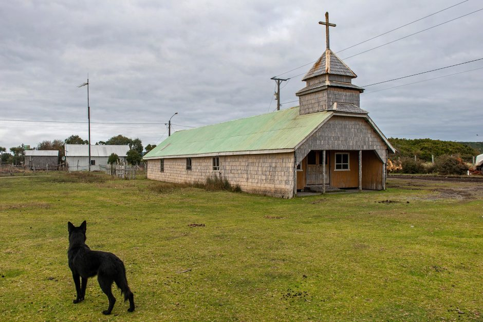 un cane osserva una chiesetta in legno a Cucao nell'Isla Chiloe, Cile
